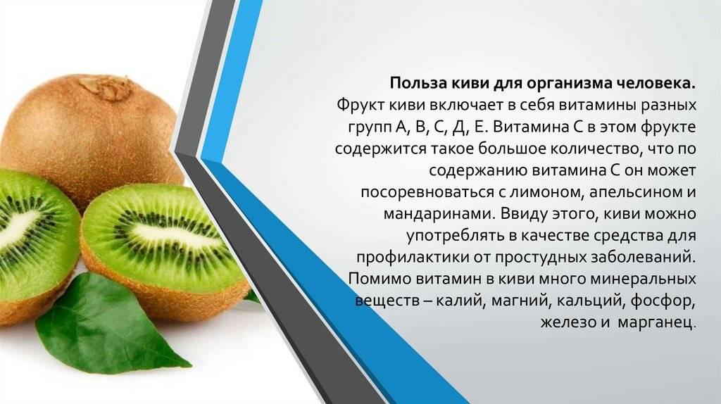 Киви – калорийность, полезные свойства и вред фрукта для организма
