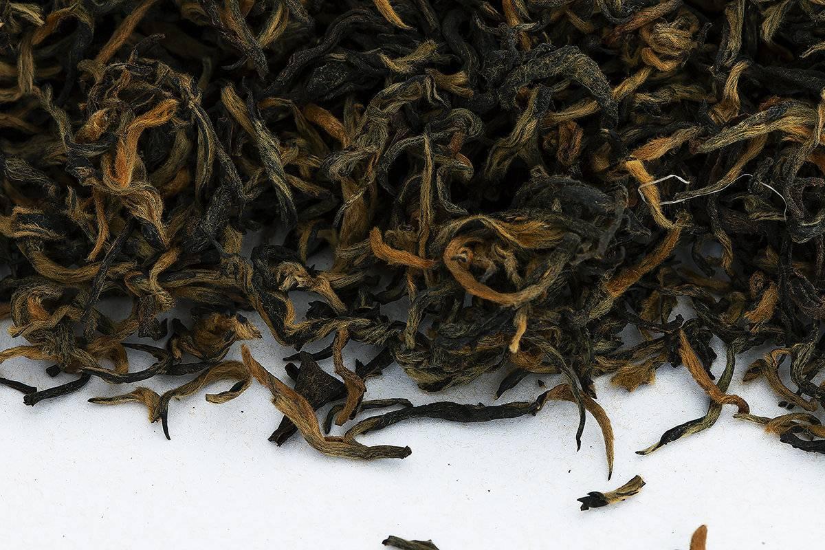 Классификация чая - teaterra | teaterra