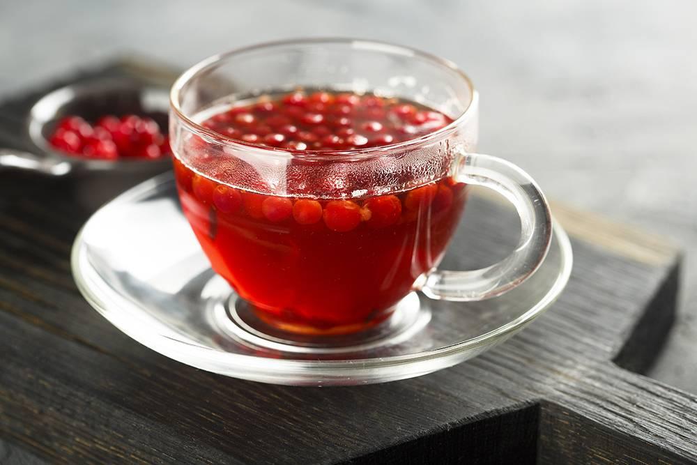 Брусничный чай: полезные свойства и противопоказания, польза и вред напитка из листьев брусники, как приготовить брусничный чай в пакетиках