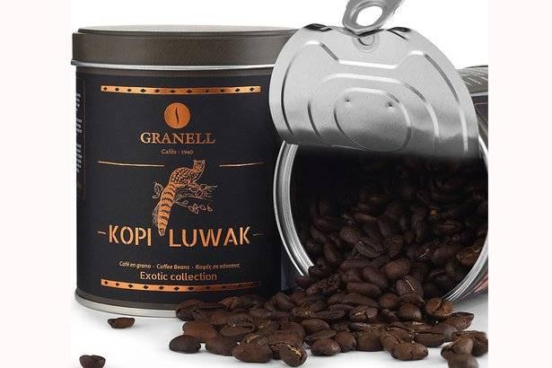 Кофе из кала – самый дорогой в мире. какие животные «делают» элитные сорта кофе