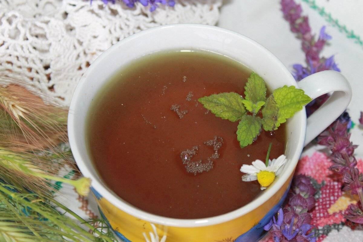 Можно ли при беременности мяту и чай с ней, противопоказания на ранних и поздних сроках + фото, видео и отзывы