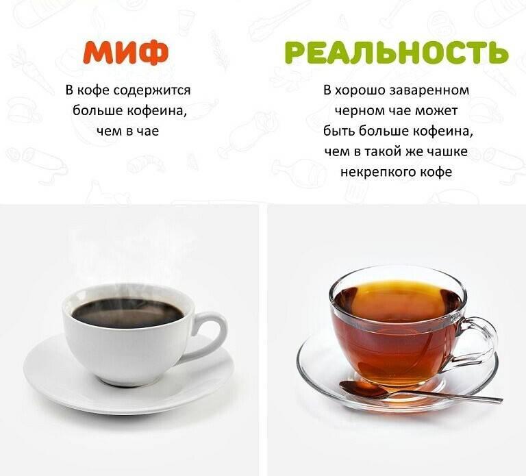 Креатин и кофеин: совместимость, польза и вред, эффекты.