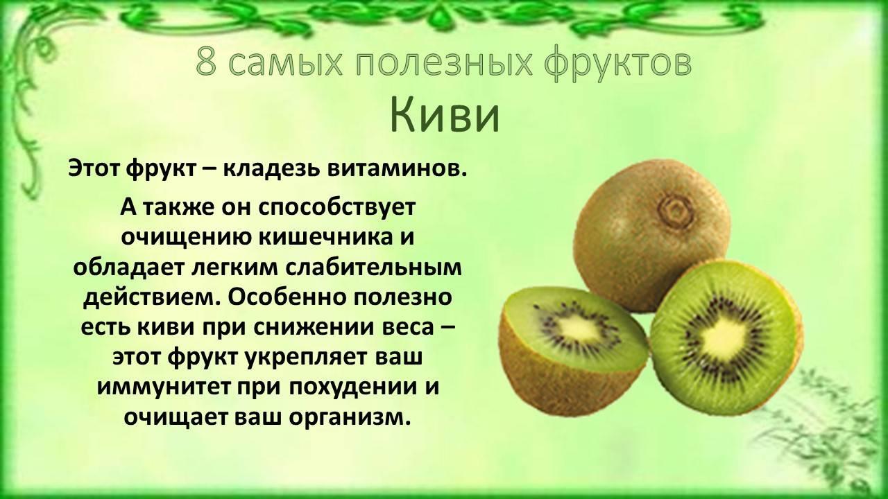 Киви - 12 полезных свойств и противопоказания