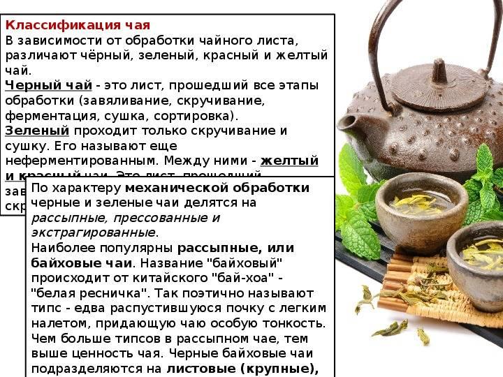 Ферментация: определение понятия, продукты и их свойства