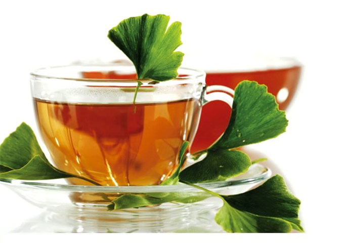 Чай гинкго билоба: польза и вред