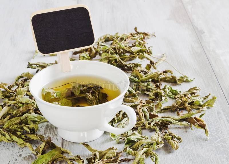 Кофе с мятой – рецепты со свежими и сушеными листьями