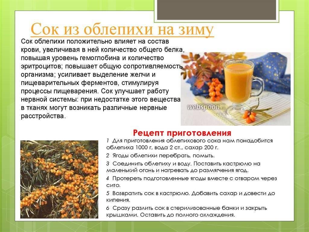 Семена базилика: полезные свойства, применение и противопоказания | пища это лекарство