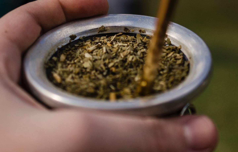 Что такое чай мате, свойства (польза и вред), рецепты
