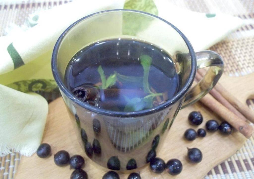 Чай из листьев смородины: польза и вред, рецепты