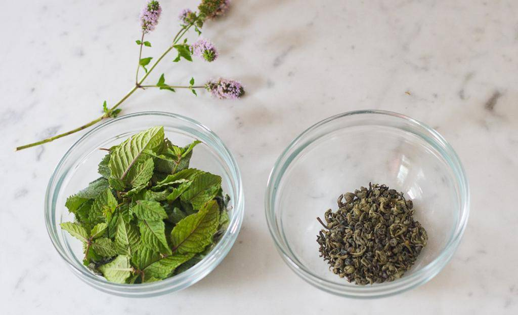 Польза чая с мелиссой для организма человека. возможный вред чая с мелиссой, правила заваривания и особенности употребления - womens-24