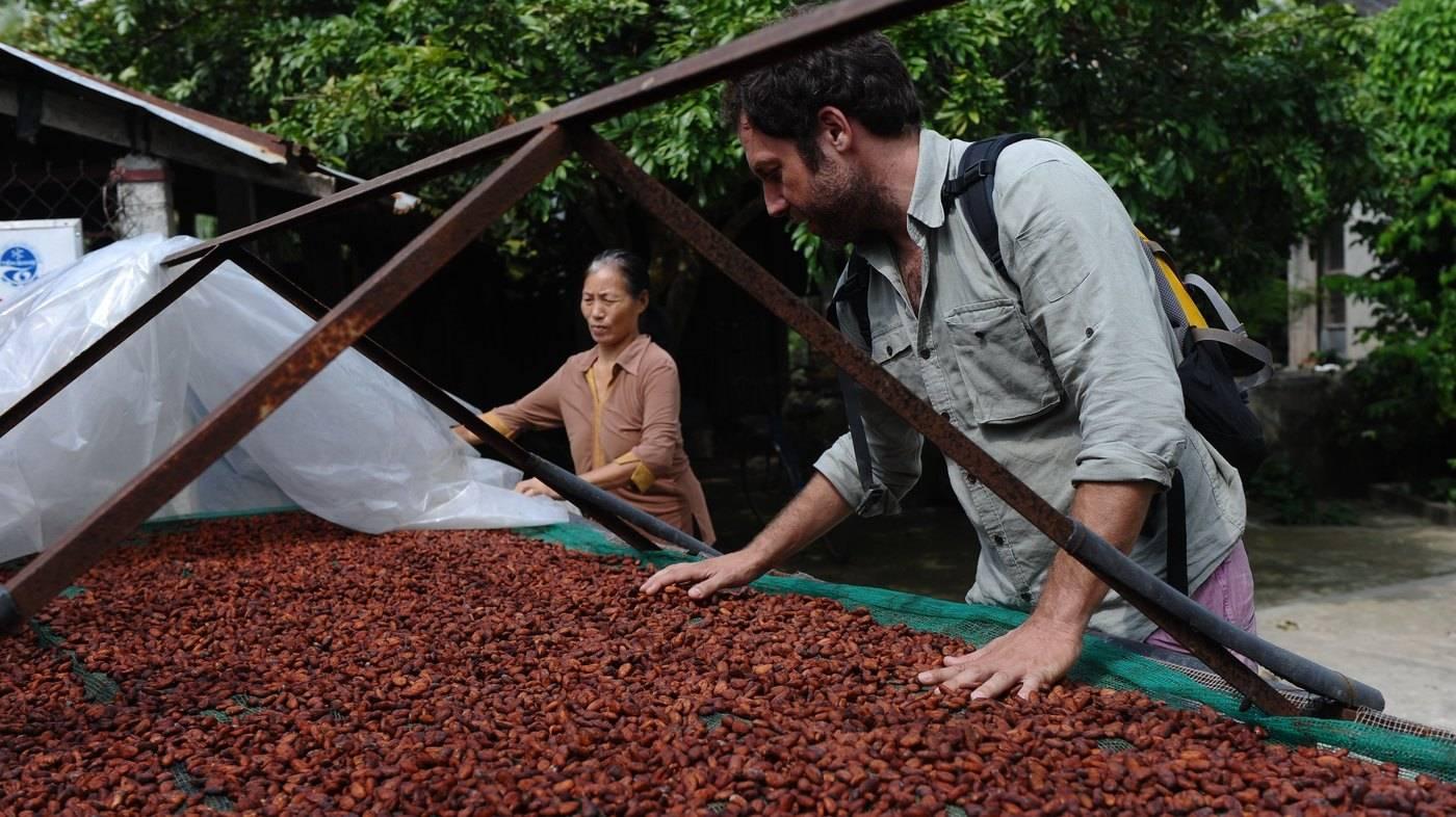Кофе из вьетнама – особенности выращивания, сорта, способ заваривания. цены на сырье