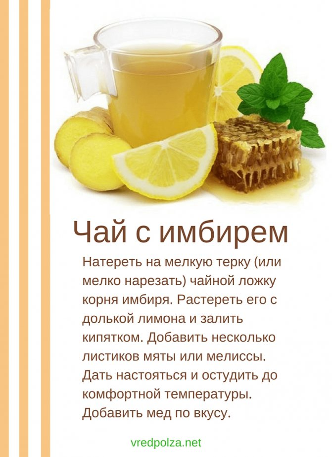 """Польза и вред имбирного чая с лимоном – портал """"стань лучше"""""""
