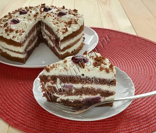 Шоколадный торт на кефире: быстрый рецепт с какао