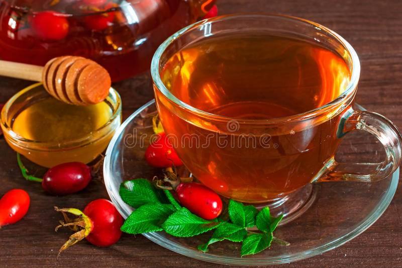 Чай из шиповника: полезные свойства и противопоказания, как правильно заваривать, как часто можно пить