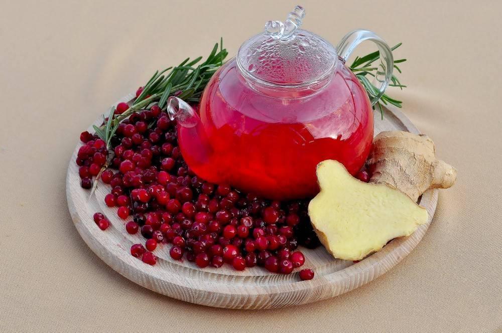 Полезные свойства и противопоказания красной ягоды, листьев и сока брусники