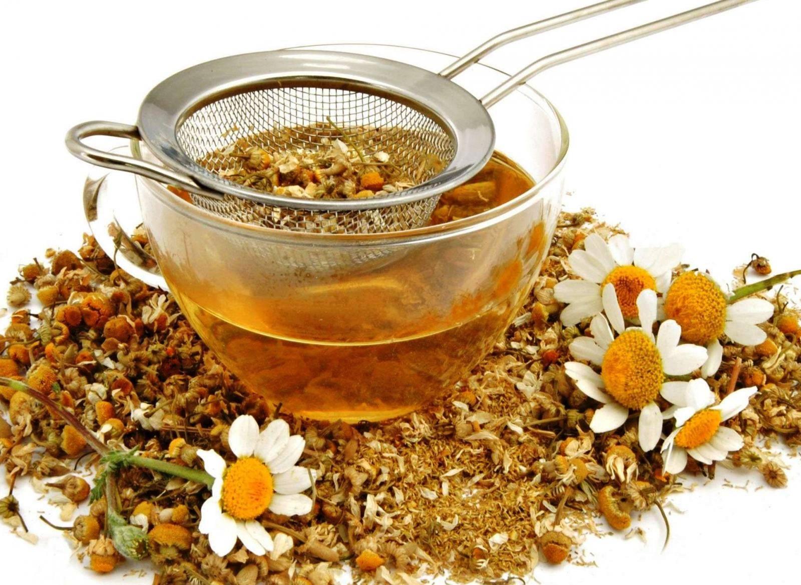 Чай с ромашкой: польза и вред для организма
