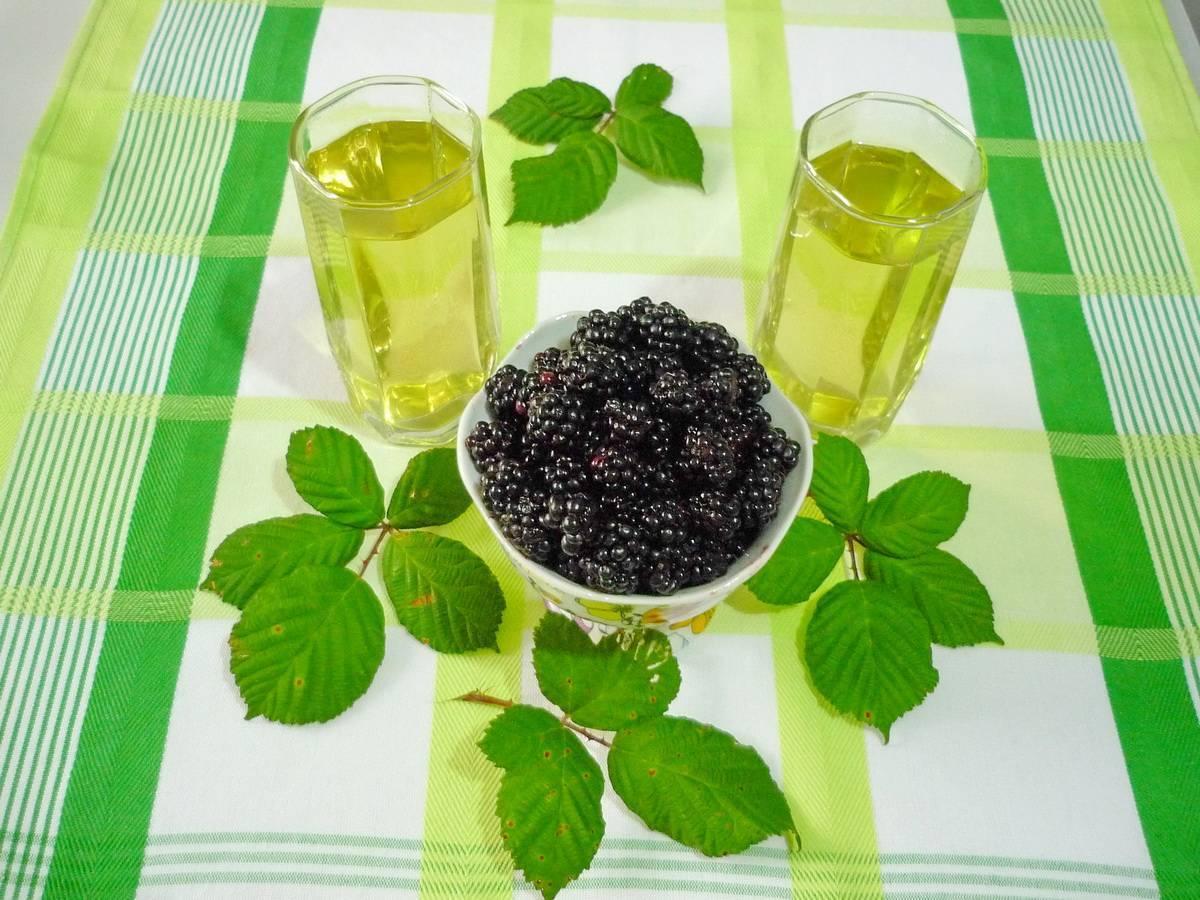 Чай из листьев ежевики – как приготовить, польза и вред, заготовка
