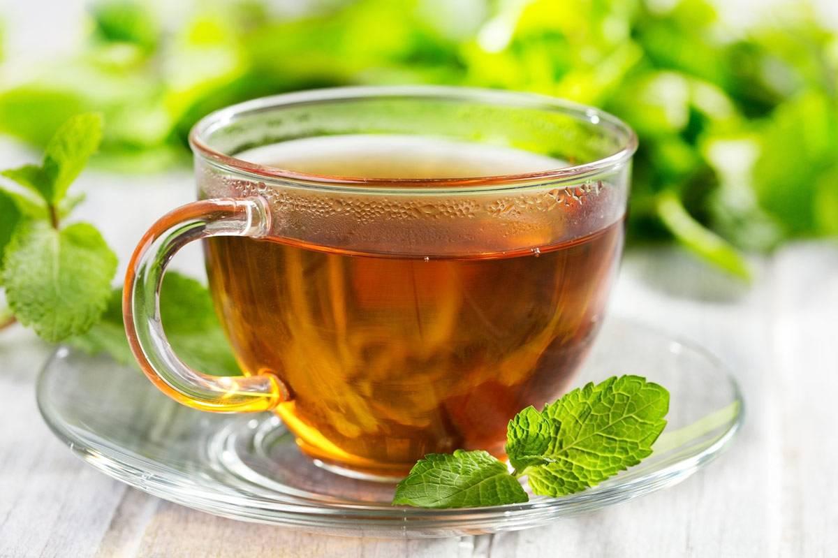 7 полезных для организма свойств чая из ромашки. вред