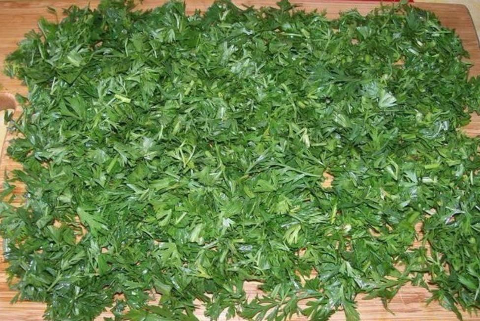 Морковная ботва — лечебные свойства и противопоказания