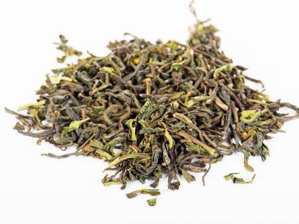 Чай белый дарджилинг: заваривание, польза и вред, отзывы