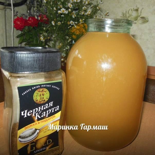Квас из цикория в домашних условиях — рецепт с сухими дрожжами