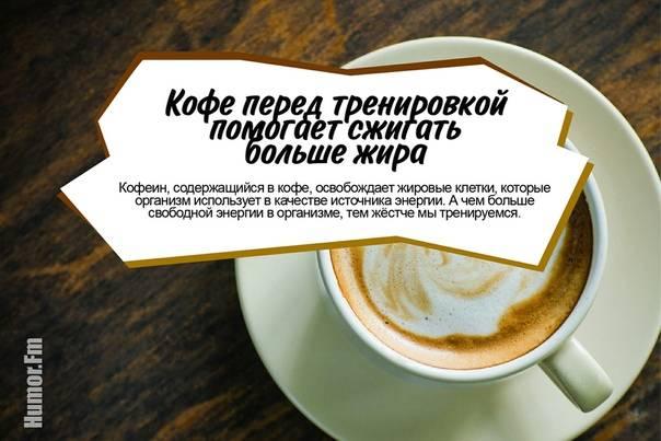 Кофе до и после тренировки: можно ли?   proka4aem.ru