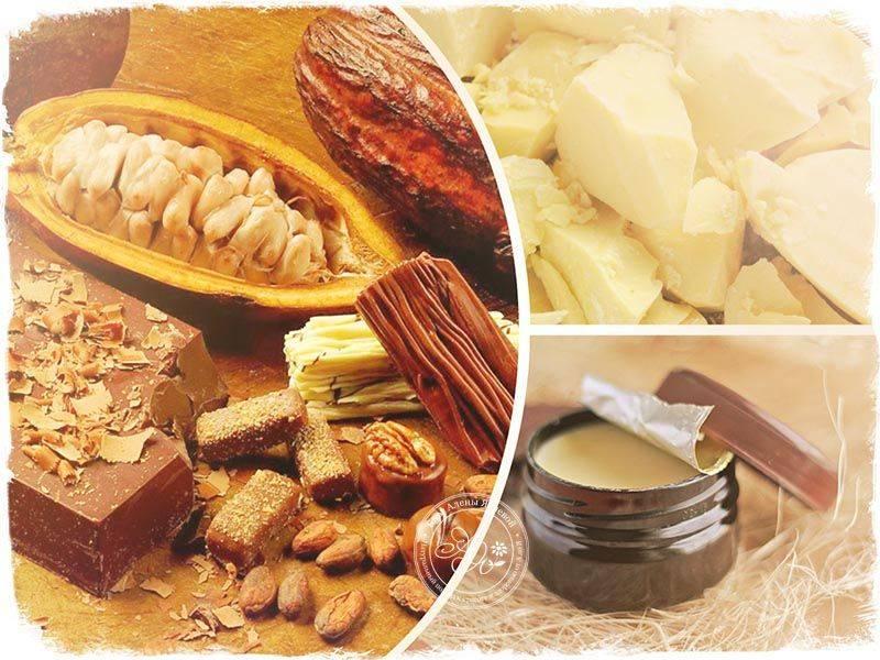 Масло какао: свойства и применение в косметологии