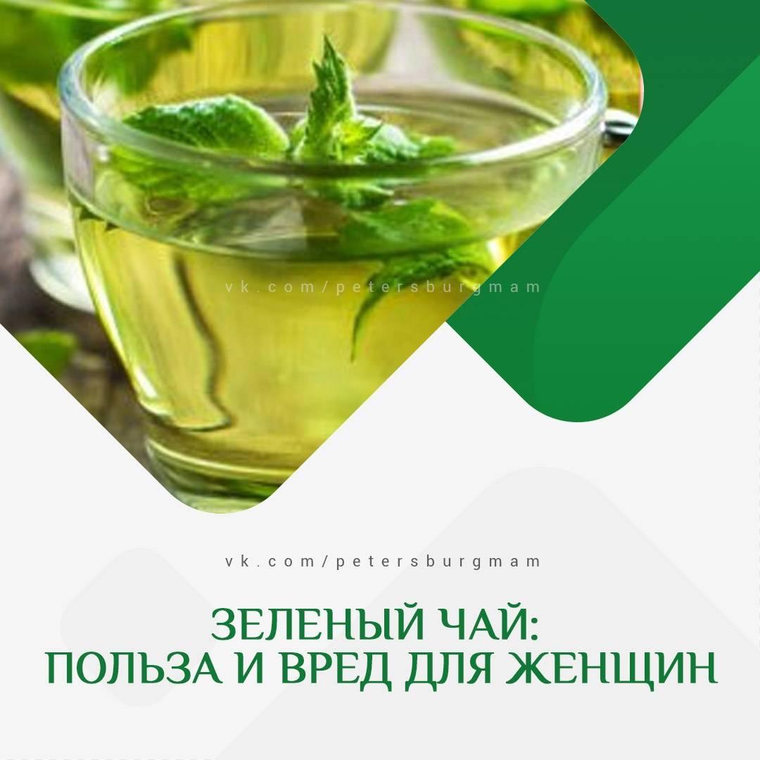 Зеленый чай для мужчин | польза и вред | чайкофский