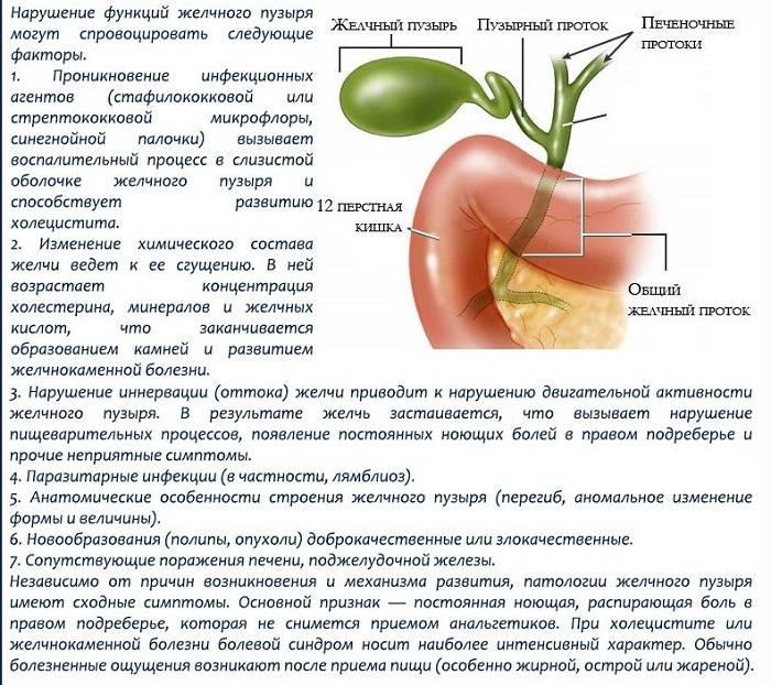 Диета при воспалении желчного пузыря:что можно кушать