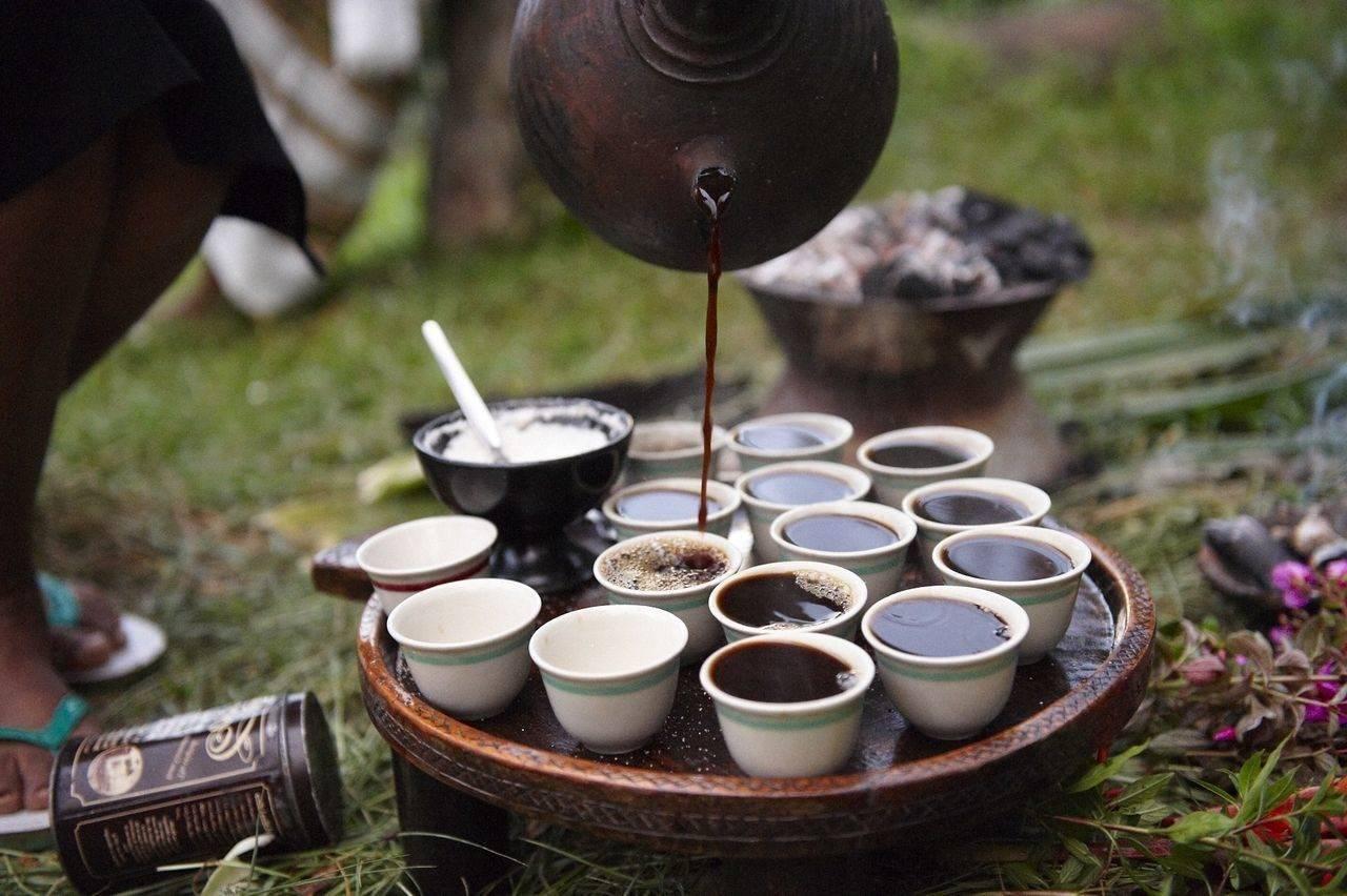 Родина кофе или откуда родом коричневое золото