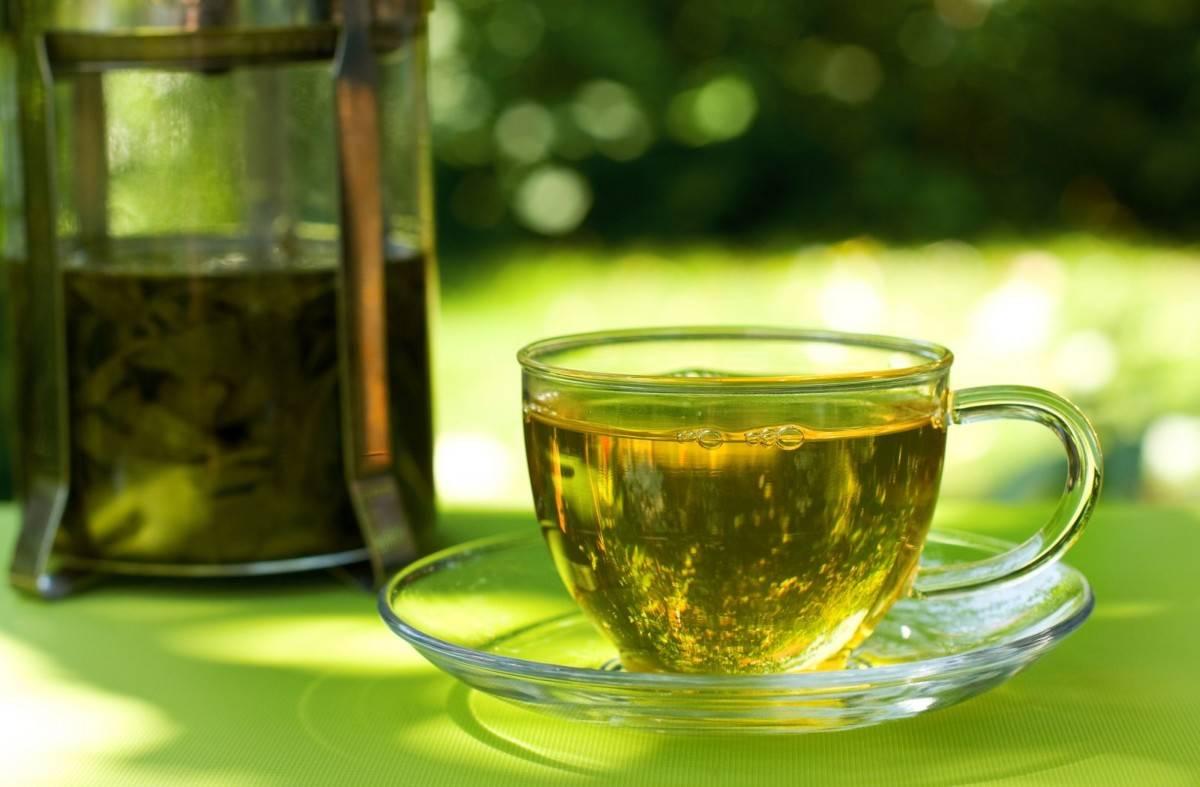 Полезный чай с тархуном — ароматное решение проблем со здоровьем
