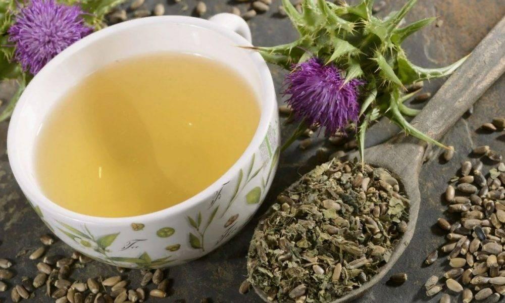 Чай из расторопши – природный помощник для печени