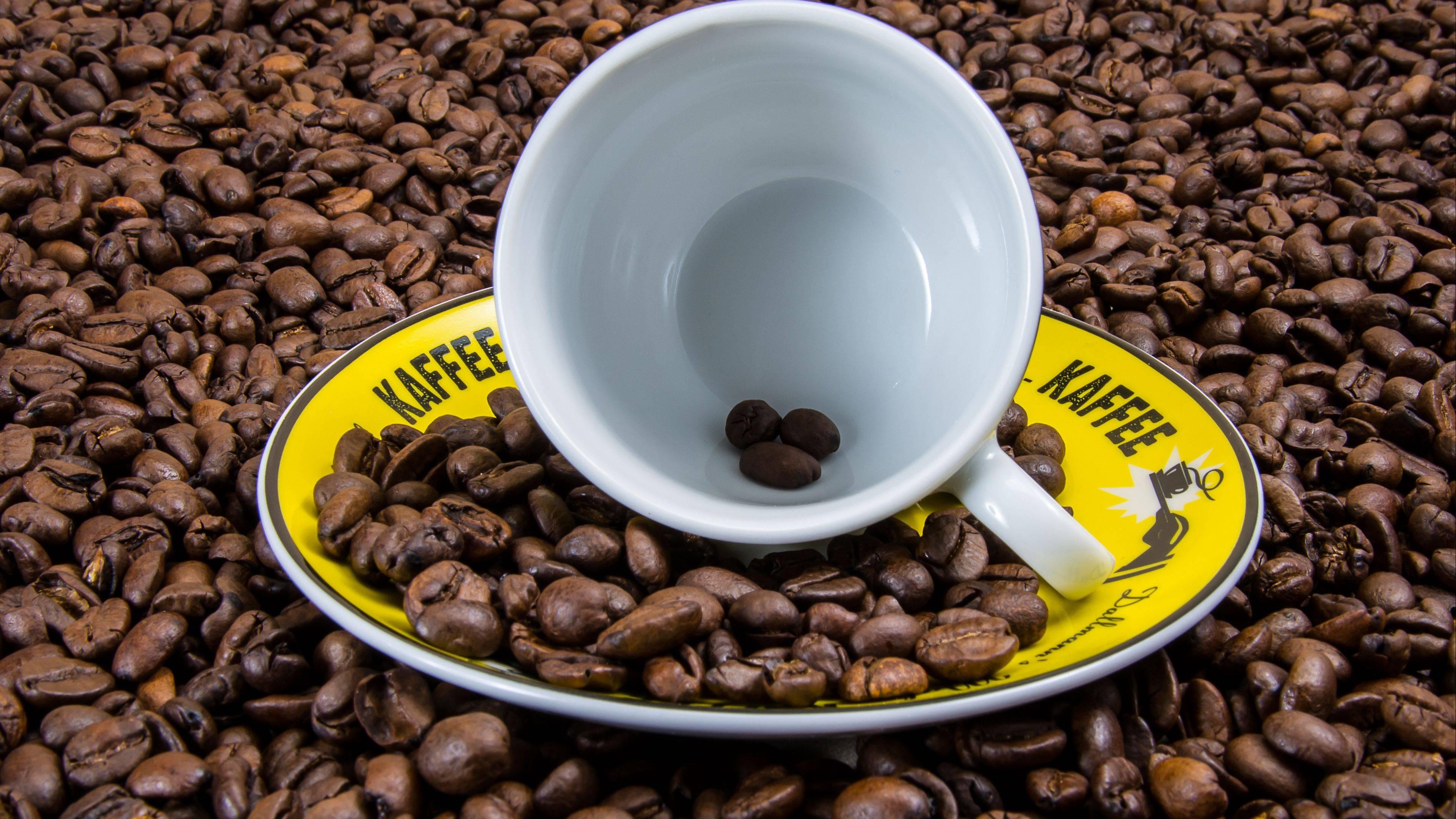 Польза и вред кофе для здоровья человека – важные аспекты