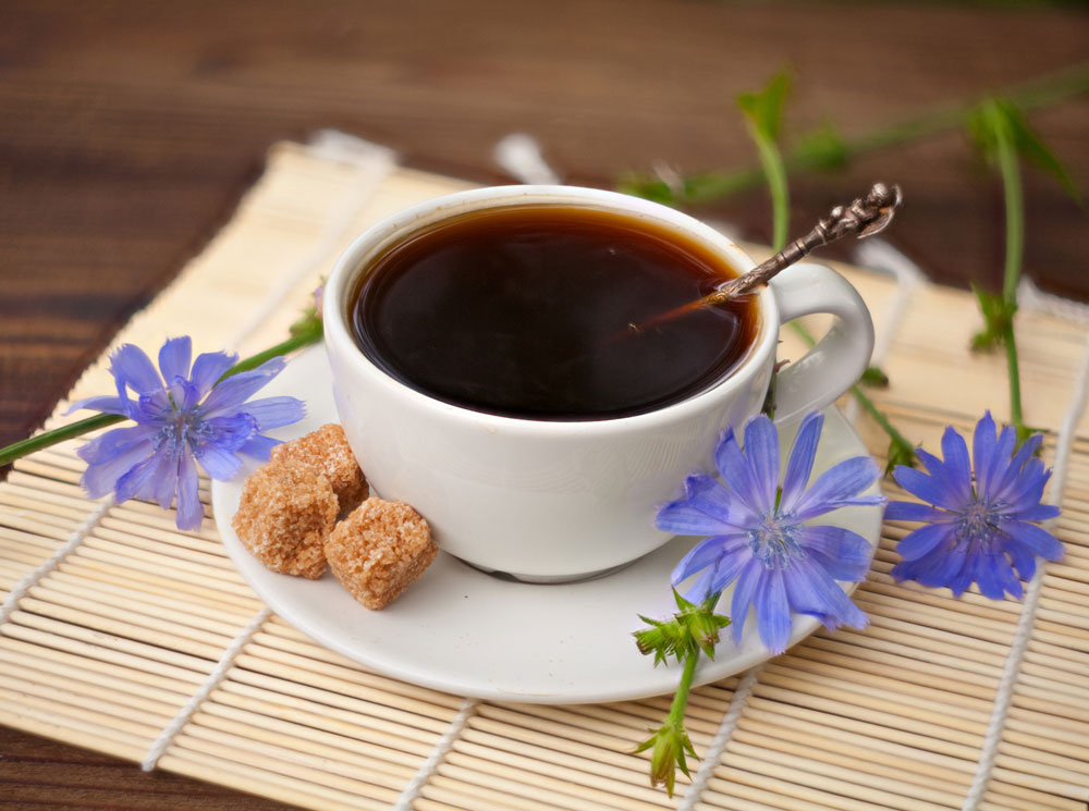 Как пить цикорий вместо кофе – рецепты замены кофеина