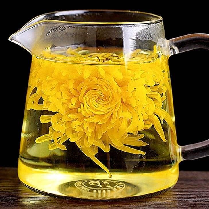 Зеленый чай с хризантемой: полезные свойства, приготовление