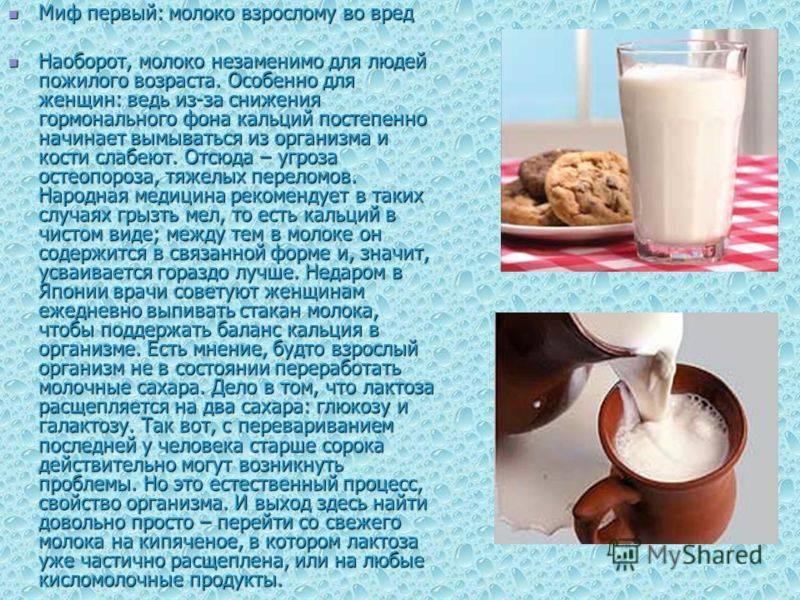 Польза и вред чая с молоком для похудения