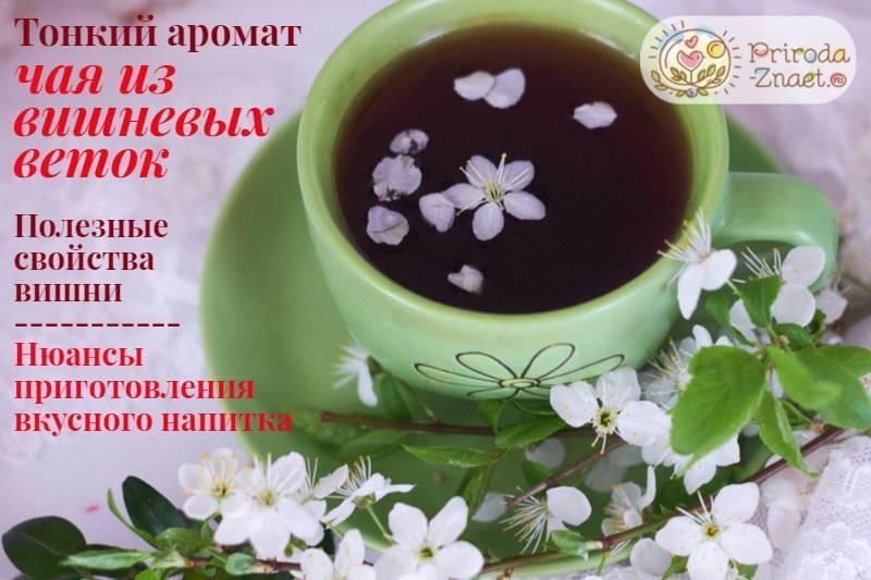 Ароматная польза— вкусный чай из веток вишни