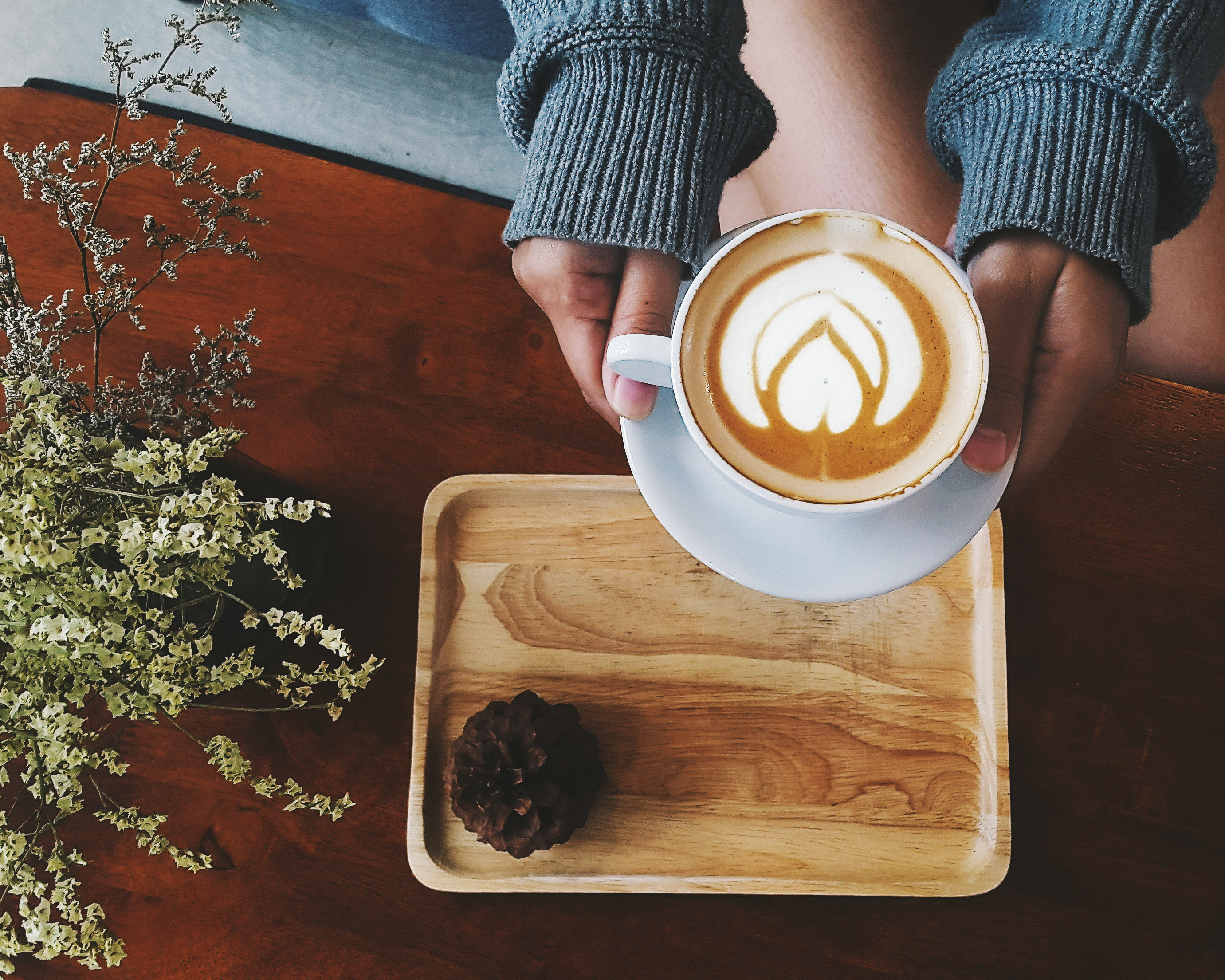 Влияние кофе на сосуды, сердце, кожу, желудок, давление