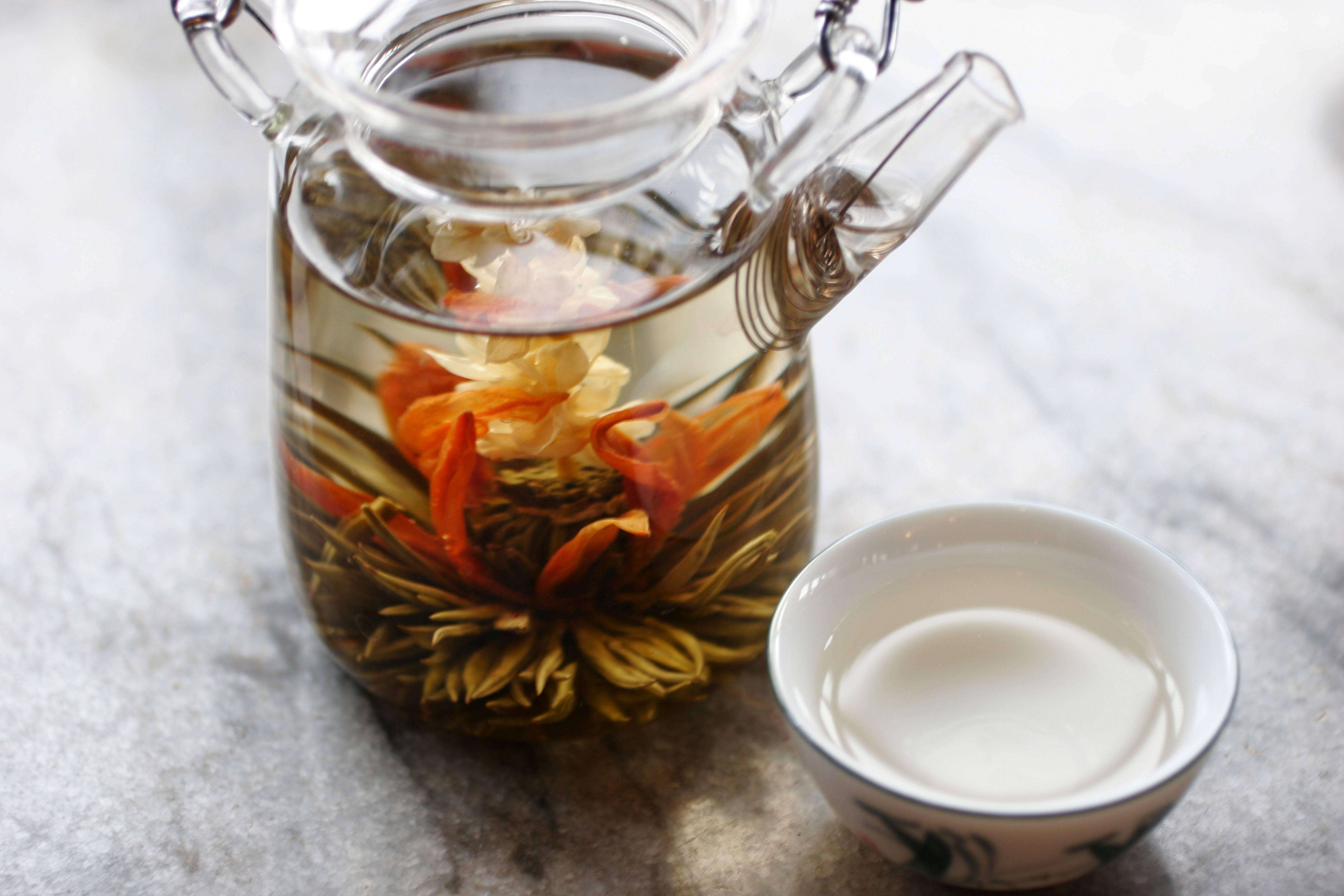 Чубушник: полезные свойства и противопоказания, как приготовить вкусный чай