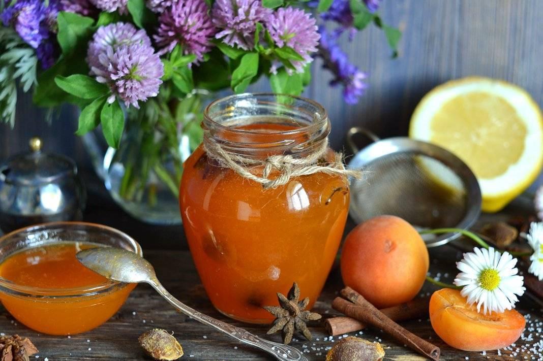 Сушеные абрикосы: польза и вред для здоровья, противопоказания, как выбрать, употребить, хранить, заготовить самостоятельно