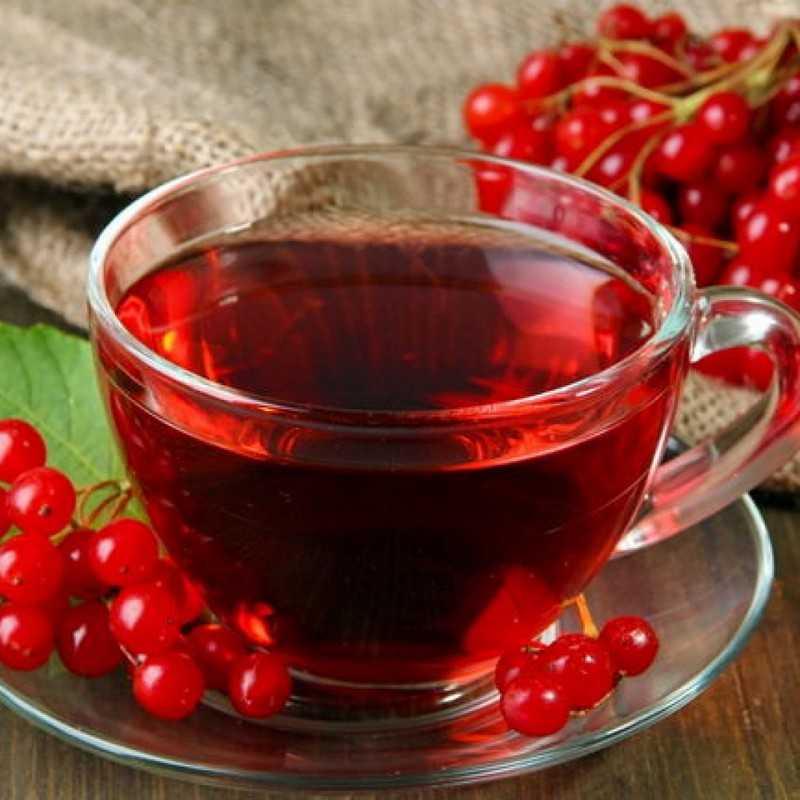 Клюква полезные свойства для популярной зимней ягоды