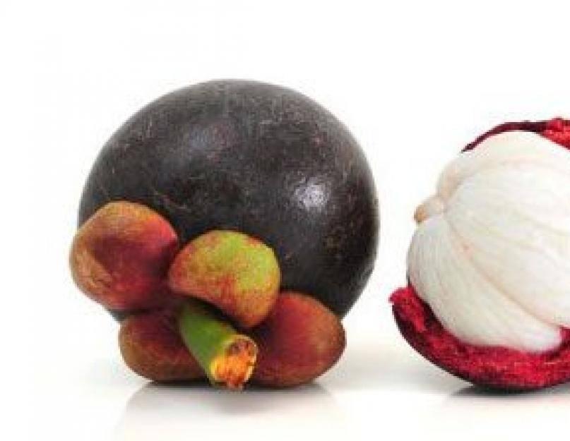 Мангустин - польза и вред, состав, калорийность. как едят мангустин, как принимать для похудения. как вырастить мангустин дома