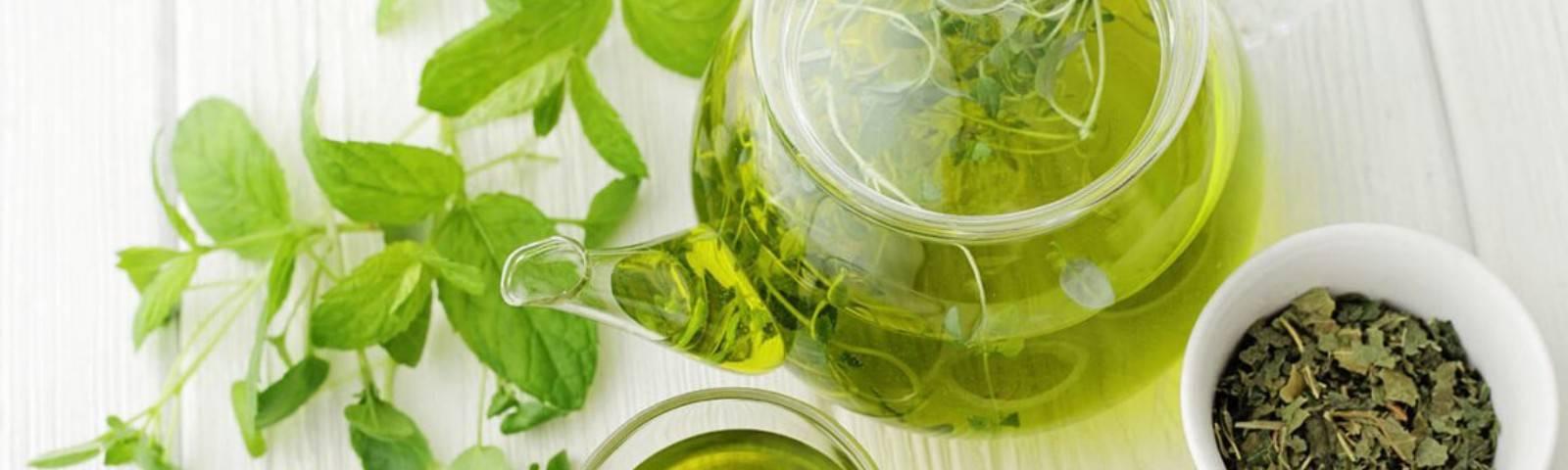 Зеленый чай: польза и вред для организма человека | пища это лекарство