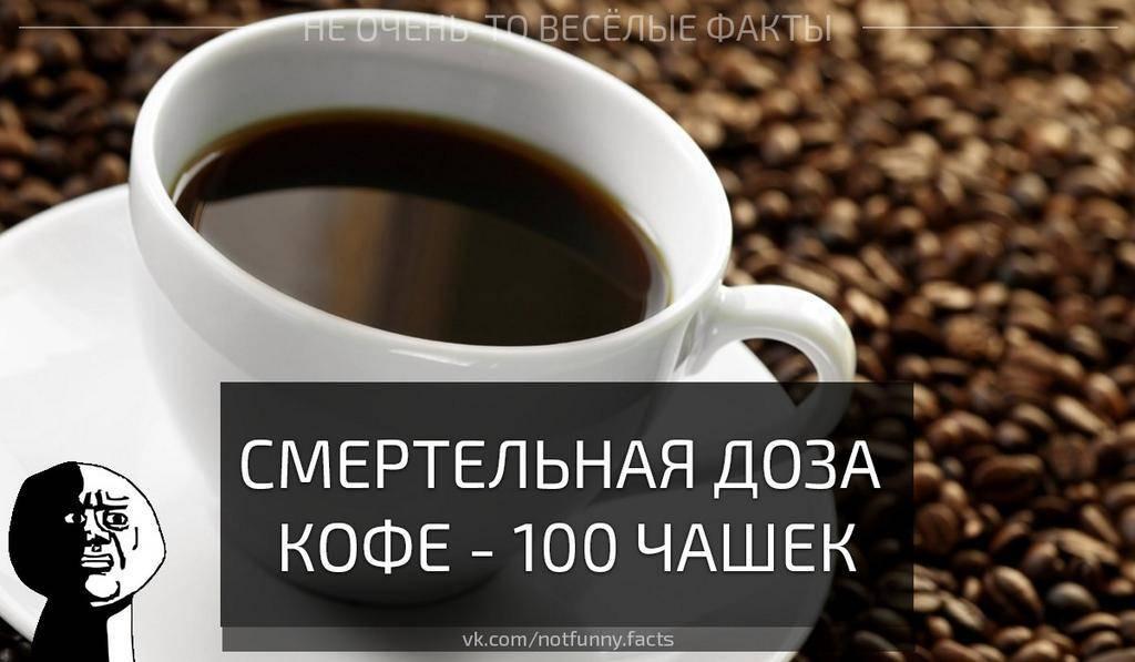 Зожник |   гид по кофеину: действие, эффекты, правильные и смертельные дозы