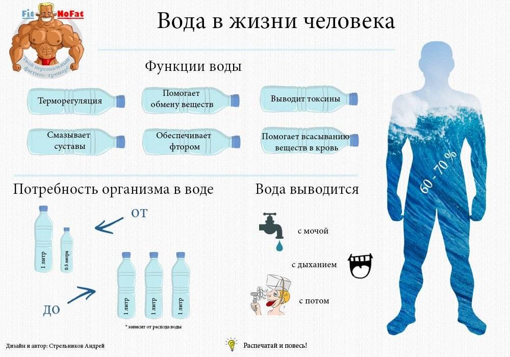 Какие продукты задерживают воду в организме человека: список