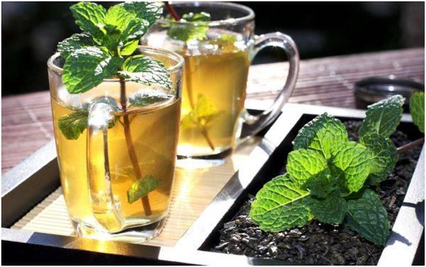 Употребления чая с мятой при грудном вскармливании: последствия