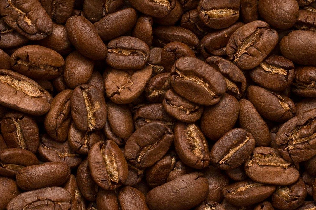 Сорта кофе: робуста и арабика – в чем различия и что лучше выбирать?
