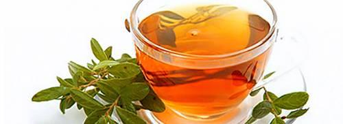 Hothair.ru - иван-чай для волос: польза и рецепты средств