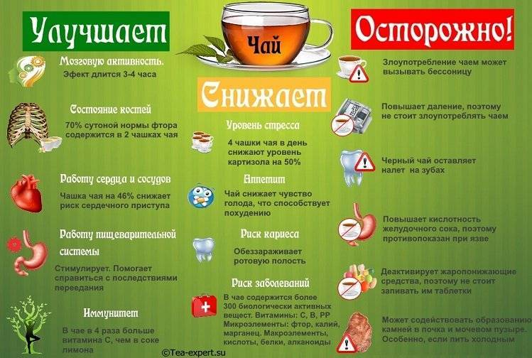 Кому нельзя пить чай? о вреде и противопоказаниях чая