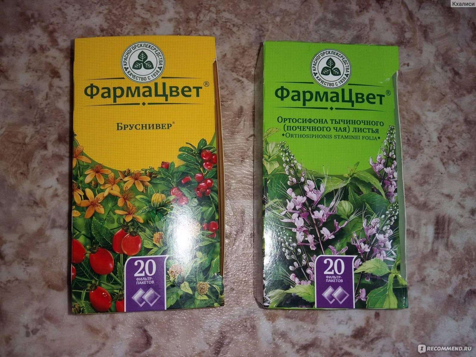 Монастырский чай для почек - почечный сбор: состав трав и лечебные свойства